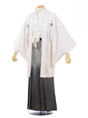 成人式卒業式袴レンタル(男)D007白ゴールド刺子紋