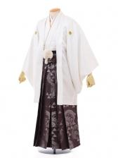 成人式卒業式袴レンタル(男)D031白紋付×紫龍袴
