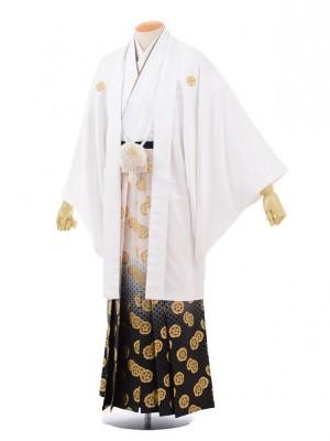 成人式卒業式袴レンタル(男)D012白紋付×ゴールド