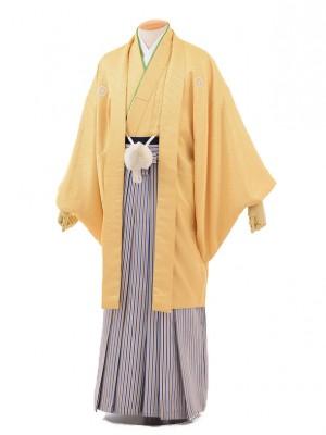 成人式卒業式袴レンタル(男)D038からし色紋付×
