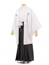 成人式卒業式袴レンタル(男)D033白ゴールド菱紋付