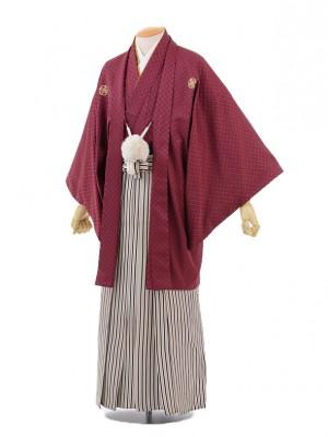 成人式卒業式袴レンタル(男)D041エンジ色刺子紋付