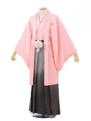 成人式卒業式袴レンタル(男)D002ピンク紋付×黒シル