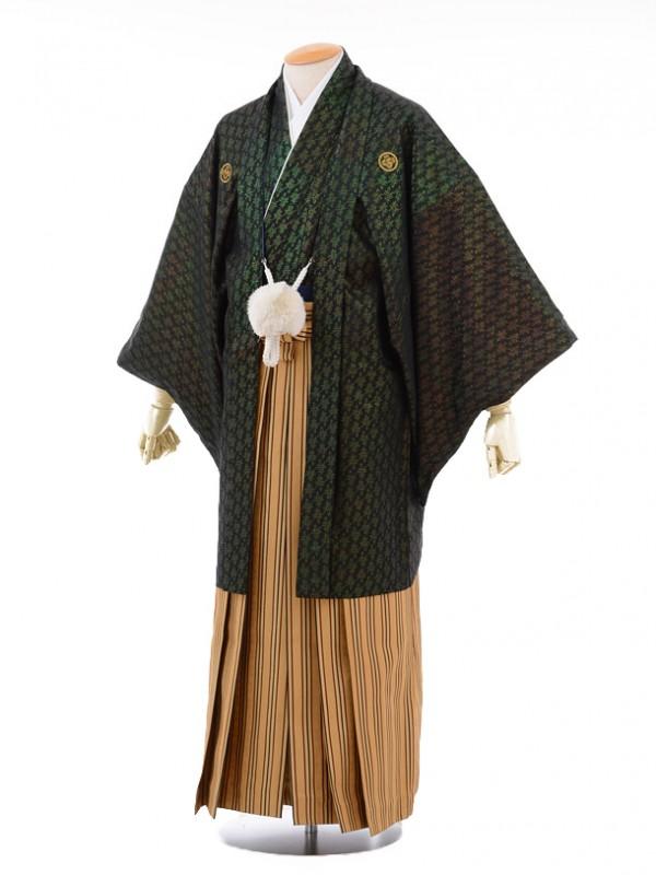 成人式卒業式袴レンタル(男)D014黒金寿紋付×か