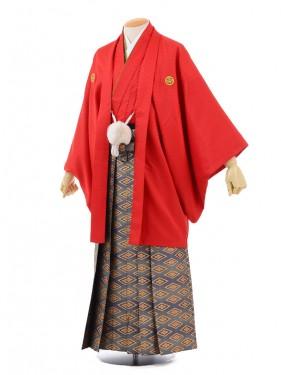 成人式卒業式袴レンタル(男)D037赤紋付×ゴールド