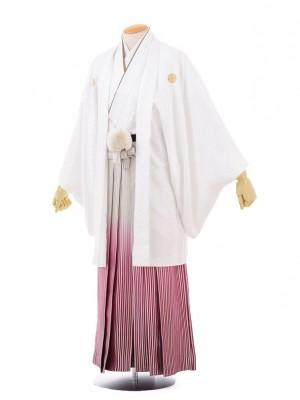 成人式卒業式袴レンタル(男)D036白紋付×赤シルバ