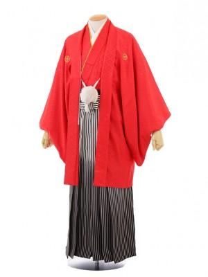 成人式卒業式袴レンタル(男)D023赤紋付×黒シルバ