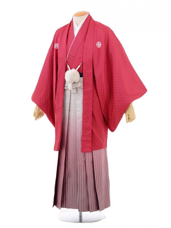 成人式卒業式袴レンタル(男)D035赤シルバー菱紋付