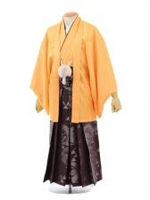 成人式卒業式袴レンタル(男)D030オレンジ紋付×紫