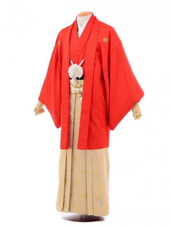 成人式卒業式袴レンタル(メンズ)D044赤紋付×ゴール