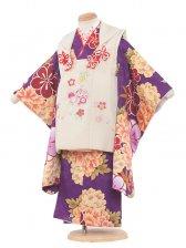 七五三(3女)3104 生成り/紫黄華