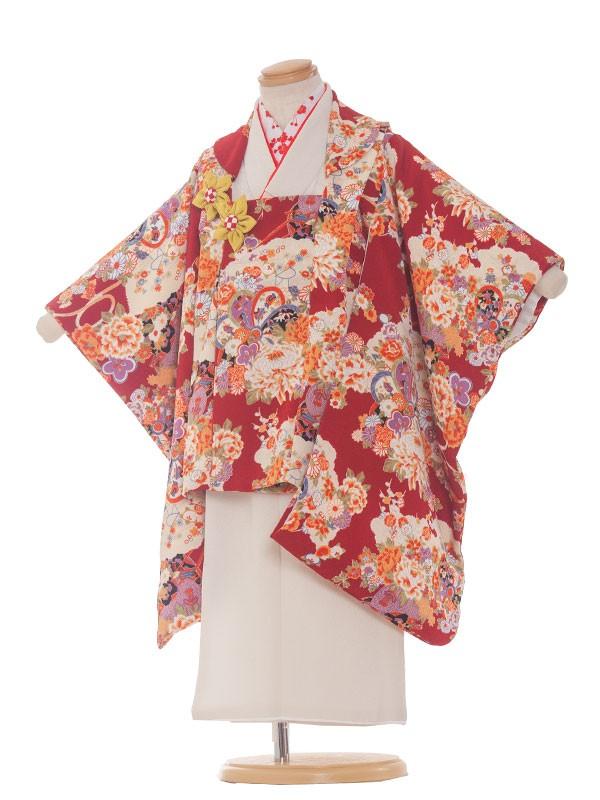 七五三(3女)3215 モダン古典×羽織菊赤