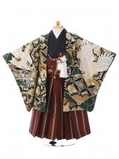 七五三(3歳男)3001グリーン 鷹に扇面 茶縞袴