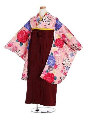 小学生卒業袴003Lピンク薔薇/エンジ