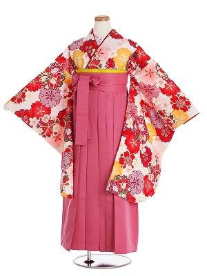 小学生卒業袴004L白地桜/ピンク