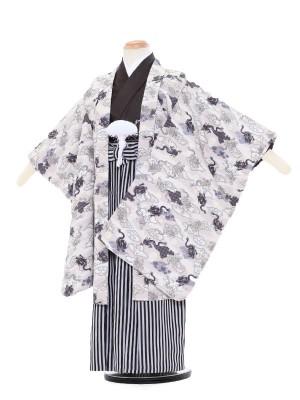 七五三レンタル(5歳男袴)5063 クリームゴールド 龍