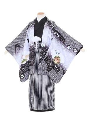 七五三レンタル(3歳男袴)5060 陽気な天使 黒パープル 鷹と打出の小槌