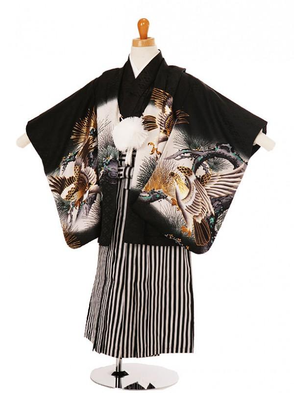 七五三(3歳袴)208-79六羽の鷹