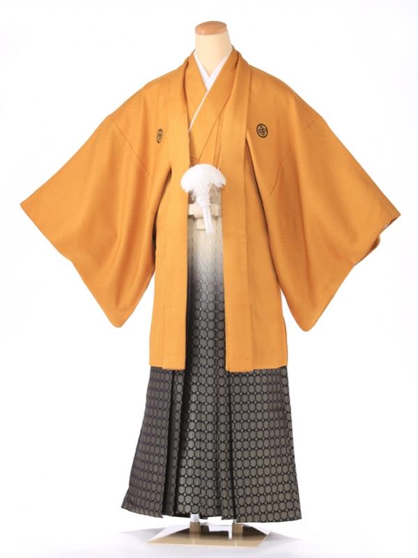紋付 山吹刺子 3号 XY3001