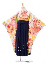 女児袴(7女)7278水色花づくし×紺袴