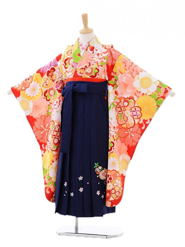 女児袴(7女)7276 赤地花づくし×紺袴