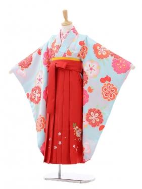 女児袴(7女)7273水色梅桜×赤袴