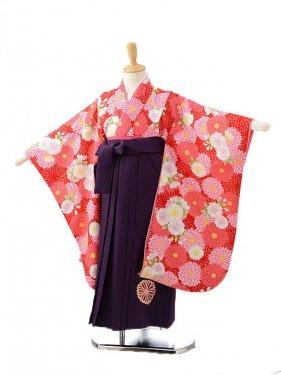 ジュニア着物(女の子袴)7108ジャパンスタイル赤花