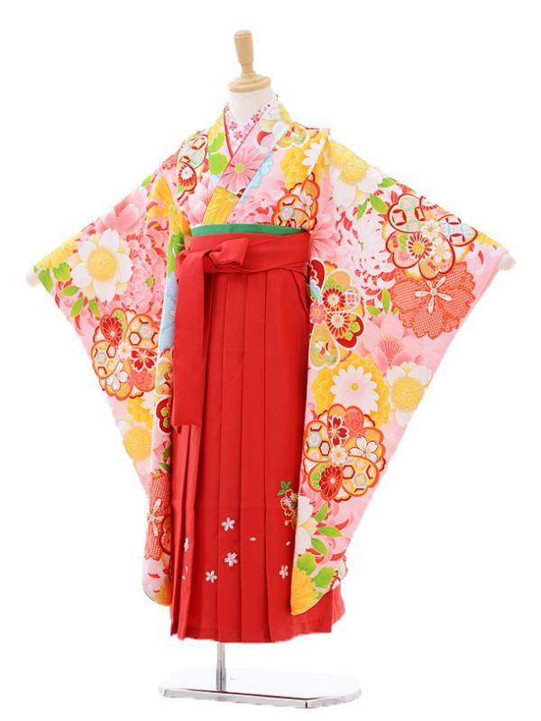 女児袴(7女)7272 ピンク地菊桜×赤袴
