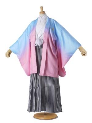 ジュニア 羽織 袴 卒業式 紋付き 水色 ピンク ボカシ