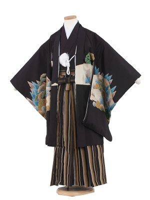 七五三レンタル(7歳男袴)7023 黒地鷹