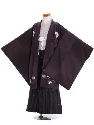 5才男の子 羽織袴 pom ponette 510