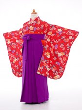 七五三(7歳女袴)女児袴sfts025赤小紋桜/紫