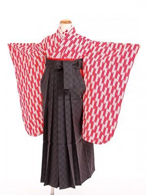 七五三(7歳女袴)女児袴sfts021赤矢羽/黒市