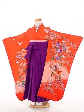 七五三(7歳女袴)女児袴sfts012朱赤華蝶/紫