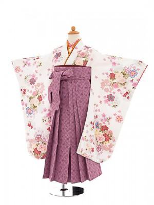 七五三(7歳女袴)女児袴sfts029白花華/薄紫