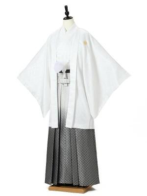 成人式卒業式男性用袴0019 白 銀ぼかし