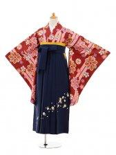 小学生卒業式袴女児9162 エンジ矢絣梅×紺袴