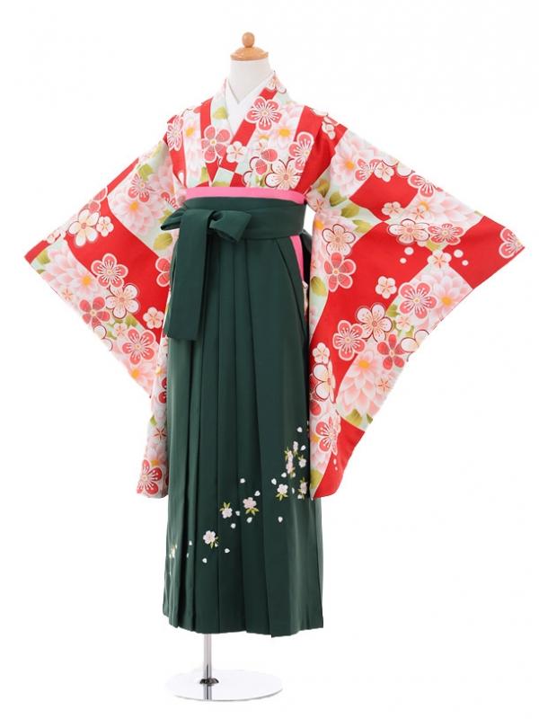 小学生卒業式袴レンタル(女の子)9272 赤白梅×グリーン袴