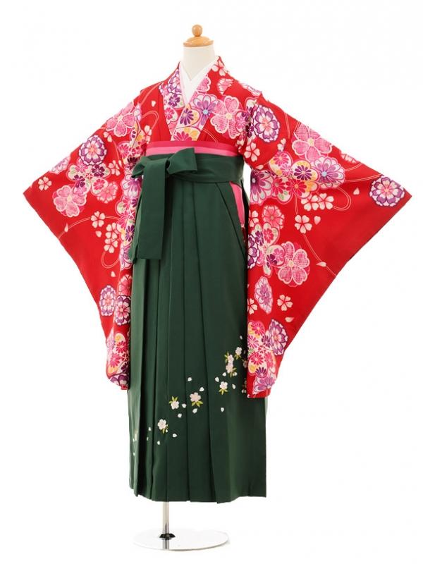 小学生卒業式袴レンタル(女の子)9193 赤地花×グリーン袴