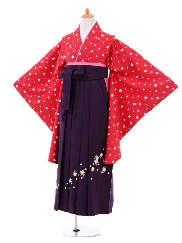 小学生卒業式袴レンタル(女の子)9293 赤地水玉×パープル
