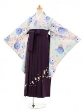 小学生卒業式袴女児9208 白地水色矢絣桜×