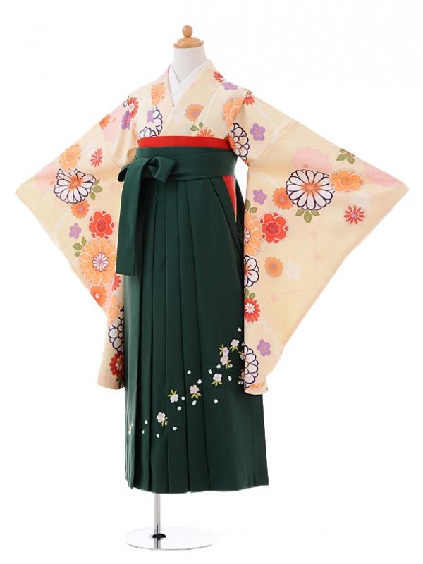 小学生卒業式袴レンタル(女の子)9398クリーム色花×緑袴