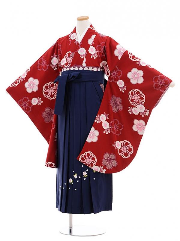 小学生卒業式袴レンタル(女の子)9706エンジ色梅×紺桜袴