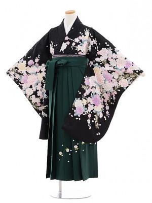 小学校卒業式袴レンタル(女の子)9709黒地バラ桜×グリーン桜袴