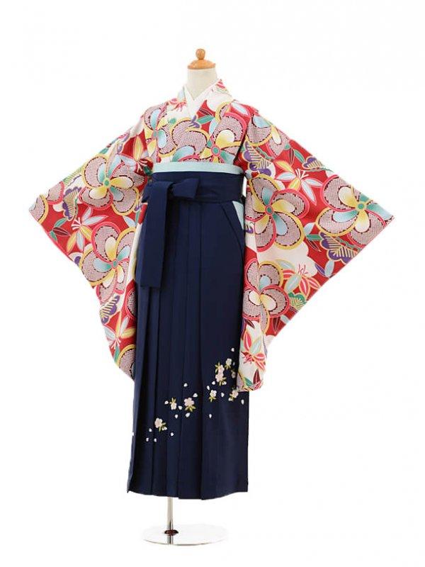 小学生卒業式袴レンタル(女の子)9143 赤地捩り梅×紺袴