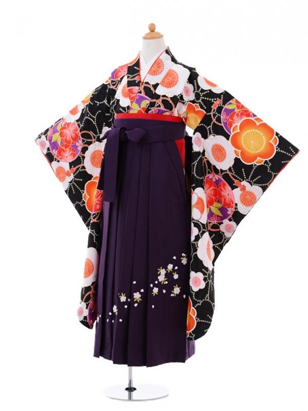 小学生卒業式袴レンタル(女の子)9353 黒地梅×紫袴