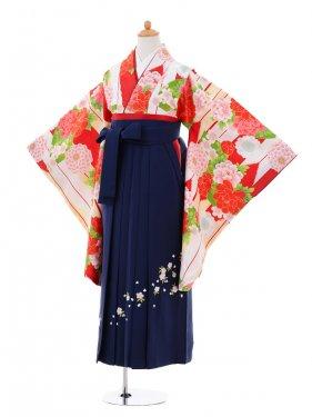 小学生卒業式袴女児9345 赤矢絣牡丹×紺袴