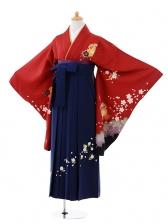 小学生卒業式袴女児9380 赤地雪輪うさぎ×