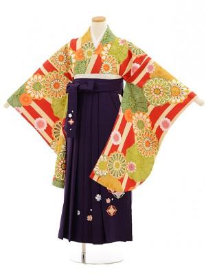 小学校卒業式袴レンタル(女の子)9814 赤クリーム縞菊×紫袴