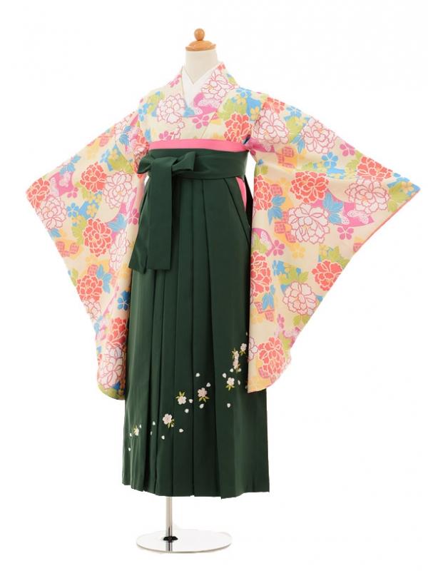 小学生卒業式袴レンタル(女の子)9219 クリーム地ぼたん×グリ